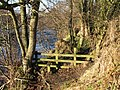 Stile on the footpath on the north bank of the River East Allen - geograph.org.uk - 635945.jpg