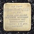Stolperstein Barsinghausen Leonhard Herzberg.jpg
