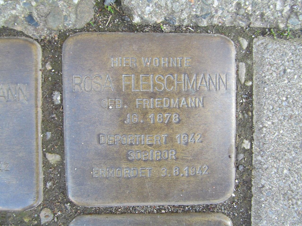 Stolperstein Rosa Fleischmann, 1, Hüttenstraße 26, Sangerhausen, Landkreis Mansfeld-Südharz.jpg