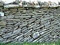 Stone Wall - geograph.org.uk - 83753.jpg