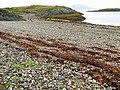 Stony beach on Lismore - geograph.org.uk - 601028.jpg