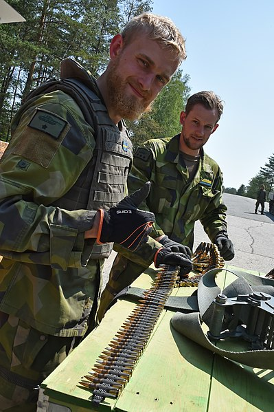 File:Strong Europe Tank Challenge 2018 (42724131612).jpg