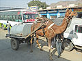 Sur les routes du Sheikawati (Inde) (8428245962).jpg