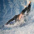 Surf IMG 1018 (3120284977).jpg