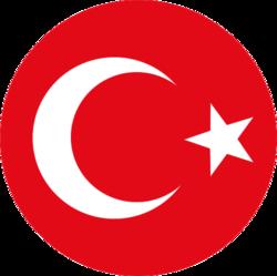 Türk millî takımlar göğüs arması.png