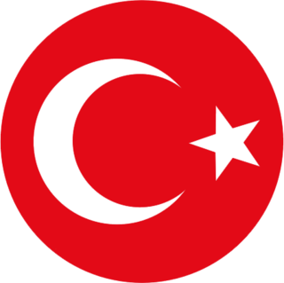 Turkey national football team mens national association football team representing Turkey