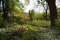 TU Delft Botanical Gardens 2.jpg