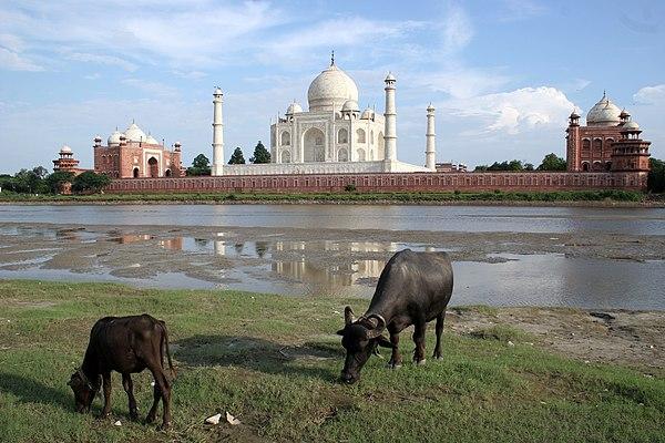 Taj Mahal-10.jpg