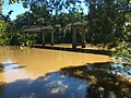 Tar River 3.jpg