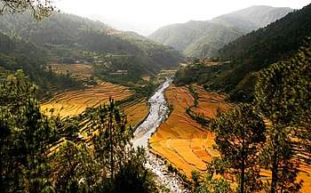 Terrace fields amidst Himalayan ranges, near Rishikesh.jpg