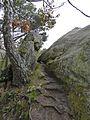 Teufelsmauer Kammweg (20).jpg