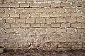 Textured Concrete Wall.jpg