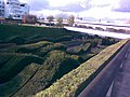 "The ""wavy hedge maze"" in Silvertown - geograph.org.uk - 1596712.jpg"
