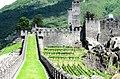 The Castles Of Bellinzona (37318412).jpeg