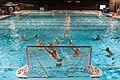 The Harker School Water Polo.jpg