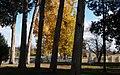 The Hermitage-27527-2.jpg