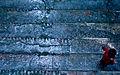 The Joy of Rain (3513691536).jpg