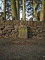 The Lowe Hill milestone - detail - geograph.org.uk - 1736957.jpg