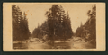 The Merced River, looking east, by E. & H.T. Anthony (Firm).png