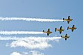 The Red Chekcers displaying over Tauranga..jpg