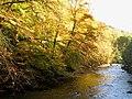 The River Allen (4) - geograph.org.uk - 598397.jpg