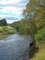 The River Ayr - geograph.org.uk - 569713.jpg