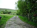 The Road to Woman's Land - geograph.org.uk - 440681.jpg