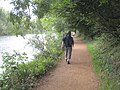 The Thames Path approaching Sonning Lock - geograph.org.uk - 952182.jpg