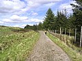 The West Highland Way - geograph.org.uk - 434904.jpg