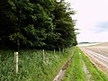 The Wetwang to Huggate Path - geograph.org.uk - 484439.jpg