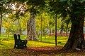The lonely bench at Botanical Garden, Pondicherry, India.jpg
