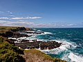 The nobbies phillip island - panoramio (1).jpg