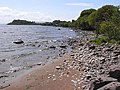 The shores of Lough Mask - geograph.org.uk - 1405155.jpg