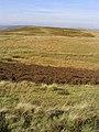 The southwest edge of Broadlee Moss - geograph.org.uk - 578330.jpg