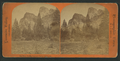 Three Graces; Yosemite Valley, California, by Reilly, John James, 1839-1894.png