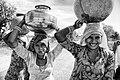 Three women carrying water pots, Rajasthan (6344112020).jpg
