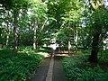 Tochigi Forest of Health.jpg