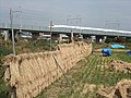 Tokaido Shinkansen viaduct Youda Bℓ(former model line) 03.jpg