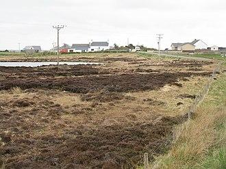 Holm, Lewis - Image: Tolm Holm (geograph 3467498)