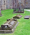 Tombstones and a Celtic Cross - geograph.org.uk - 823838.jpg