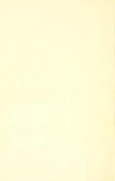 File:Tournoux - Bibliographie verlainienne, 1911.djvu