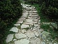 Trail in Tatra mountains paved with local rocks.jpg