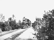Train in citrus groves in Riverside, California (CHS-1636)