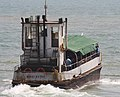 Trawler (54060982).jpeg
