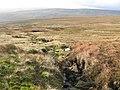 Tributary of Harthope Beck - geograph.org.uk - 615220.jpg