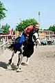 Trick riding (7236475464).jpg