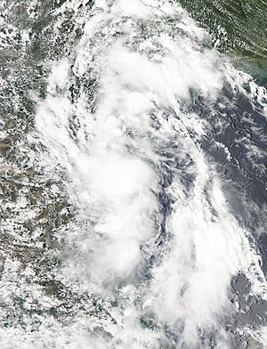 2010 Atlantic hurricane season - Image: Tropical Depression Two Jul 8 2010 1930Z