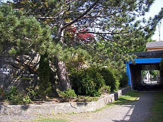 Tunnel to Sunken Gardens in Prince Rupert, British Columbia.jpg