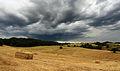 Tuscan Landscape 1.JPG