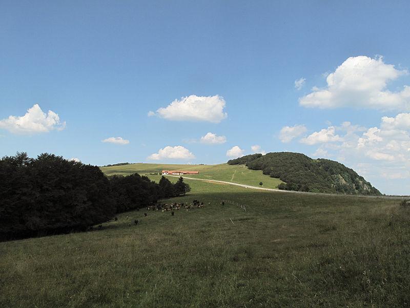 File:Tussen Lepuix en Ballon d'Alsace, wegpanorama foto2 2013-07-22 13.43.jpg